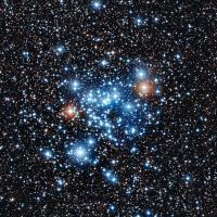 Star Cluster - NGC 3766